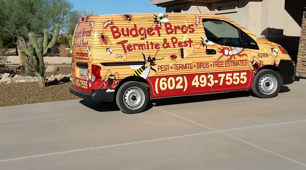 Budget Brothers Termite & Pest Elimination Reviews