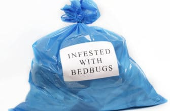 bed bug elimination phoenix, bed bug extermination phoenix, clothing and sheets contaminated by bed bugs