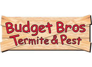 budget-brothers-termite-pest-logo